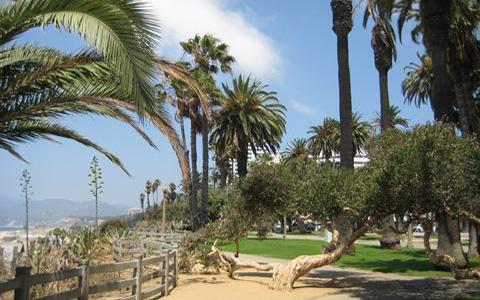 Калифорнийский рай