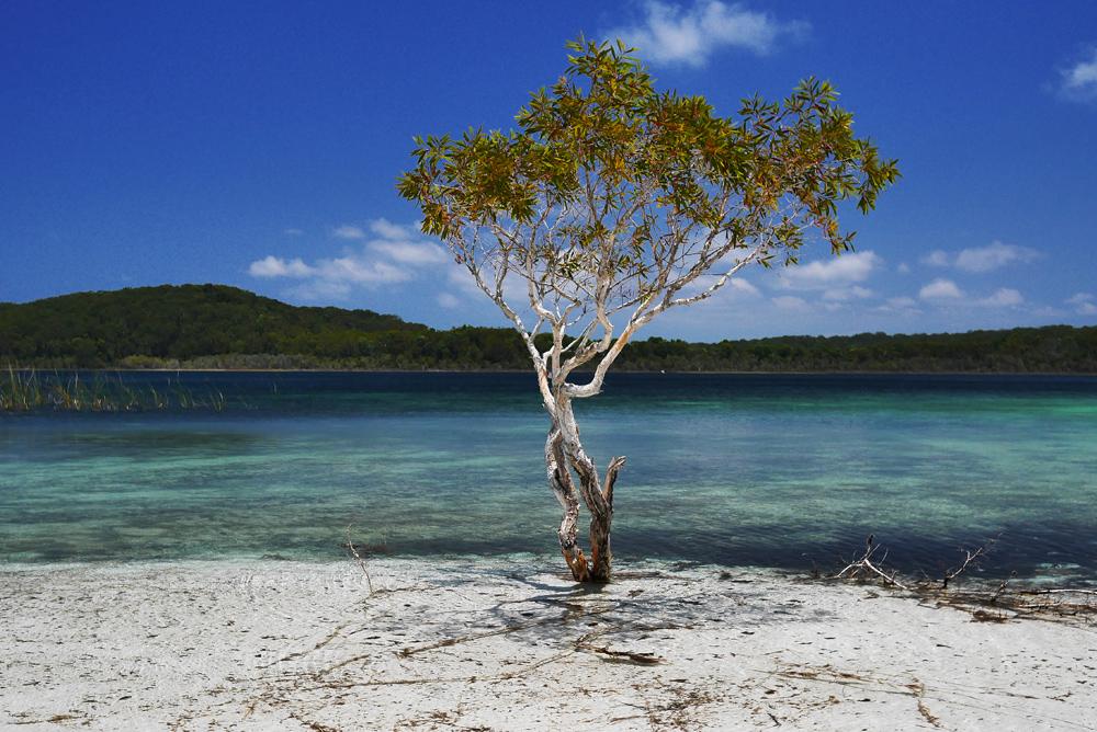 Остров Фрейзер у восточного побережья Австралии